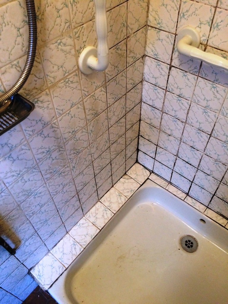Retirement Home Shower Tile Grout Before Cleaning Maidenhead